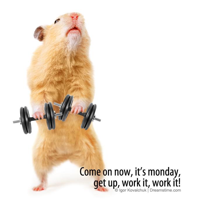 Monday – Meme Quotes