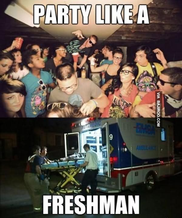 Party Memes  Funny Lets Party Meme and Pictures