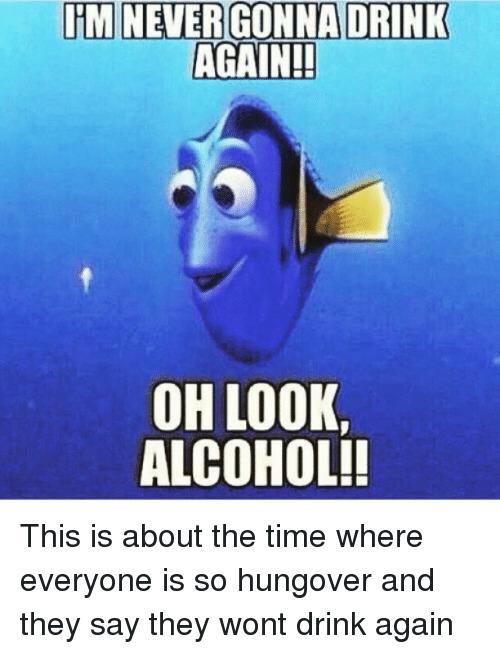 I'm Never Drinking Again Meme : never, drinking, again, Never, Drinking, Again, Memes