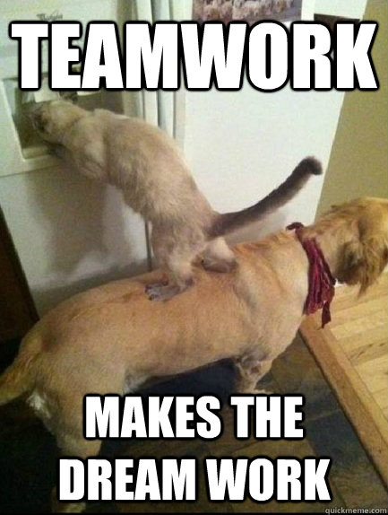 Funny Teamwork Memes : funny, teamwork, memes, Teamwork, Memes
