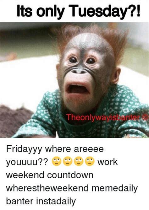 Tuesday Meme Work : tuesday, Tuesday, Memes
