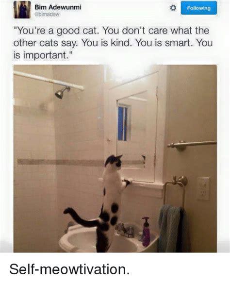 You Is Smart Meme : smart, Smart, Memes