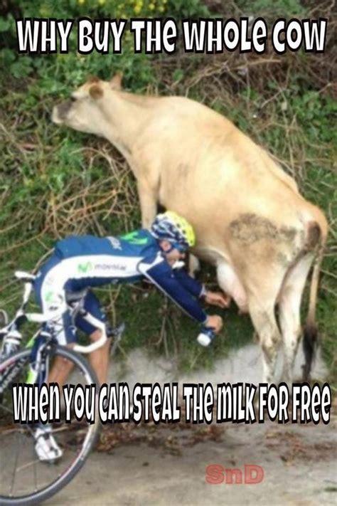 Milking Cow Meme : milking, Memes