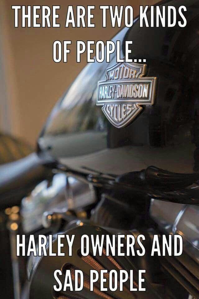 Funny Harley Memes : funny, harley, memes, Funny, Harley, Davidson, Memes