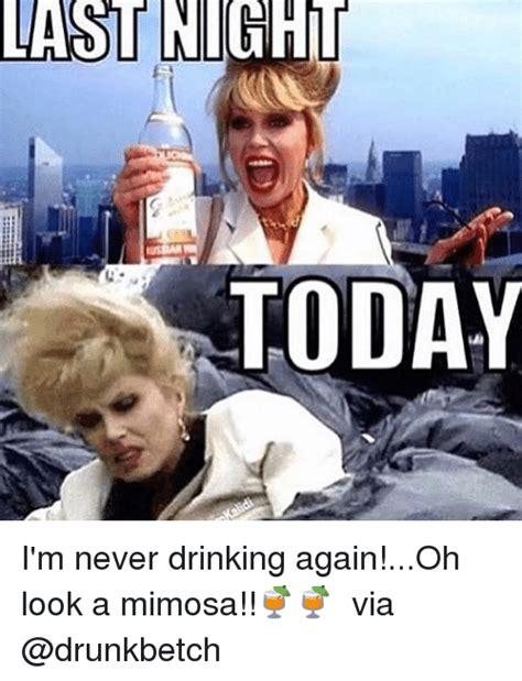 I Am Never Drinking Again Funny Pig Meme