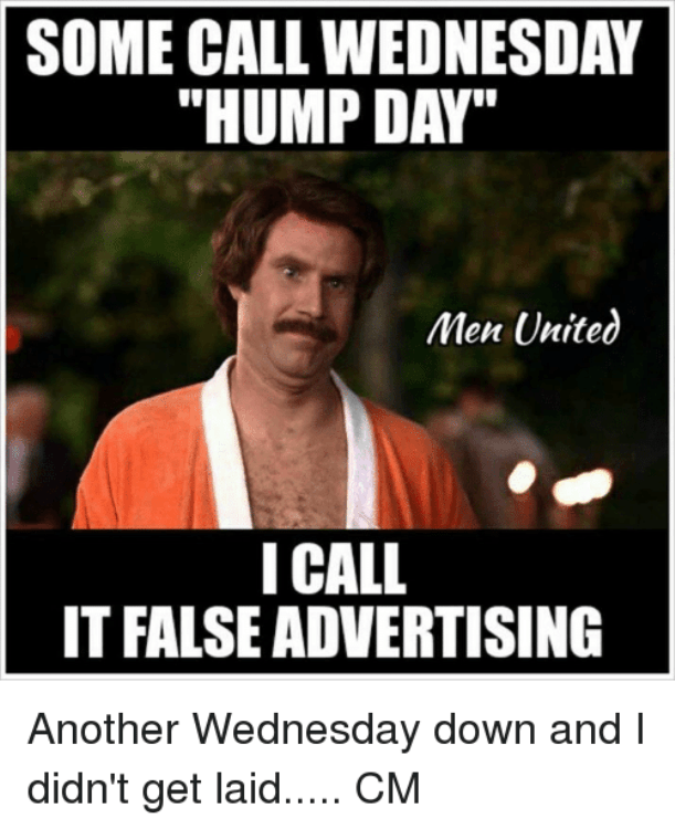 Funny Hump Day Pictures : funny, pictures, Funny, Memes