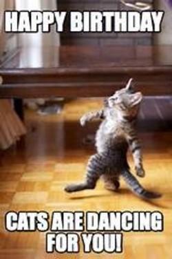 Dancing Birthday Meme : dancing, birthday, Dancing, Happy, Birthday, Memes