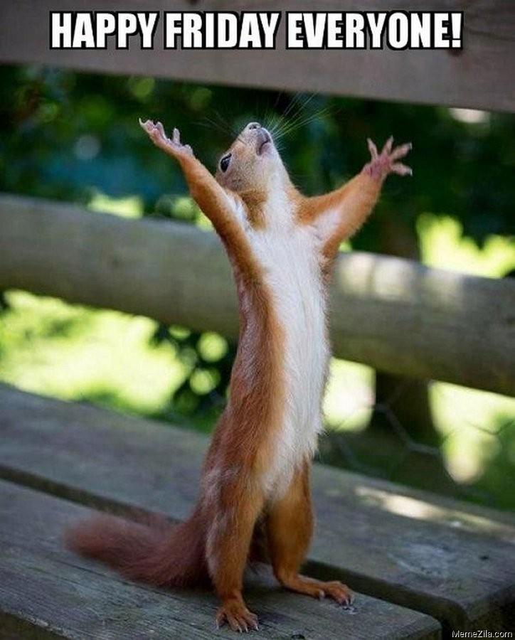 Happy Friday Meme : happy, friday, Happy, Friday, Everyone, MemeZila.com