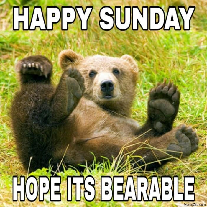 Happy Sunday Hope its bearable meme - MemeZila.com