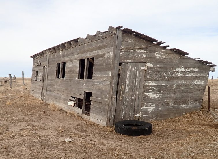 A recent picture of the old chicken house.