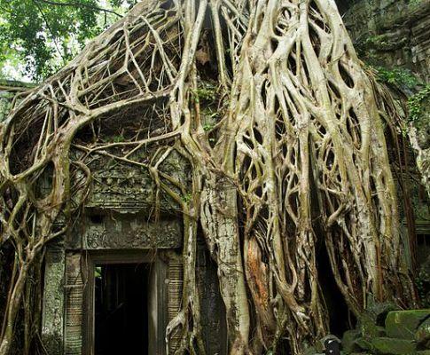 La promenade dans Angkor
