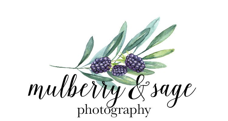 Exciting Port Huron Wedding Photographer Business Venture | Mulberry & Sage