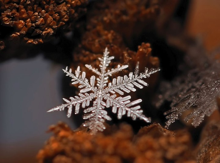 macro-photograph-of-a-snowflake-by-andrew-osokin-3