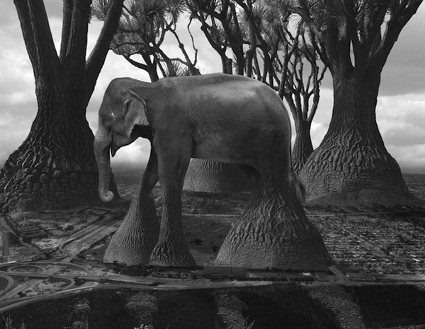 Photo-Manipulations-by-Thomas-Barbey-12