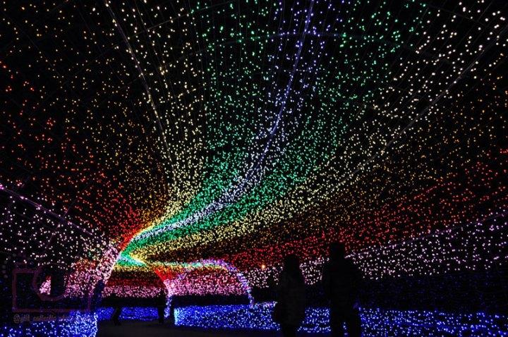 nabano-no-sato-tunnel-of-lights-japan