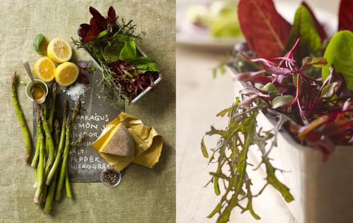 B_04-asparagus-salad