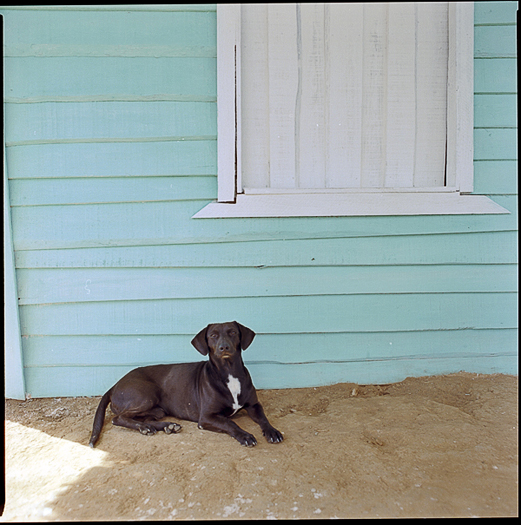 Tadas Cerniauskas (www.tadaocern.com) Cuba in Color (17)