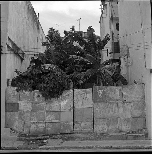 Tadas Cerniauskas (www.tadaocernc.om) Cuba (15)