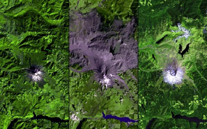 Volcanorecover_MountStHelens