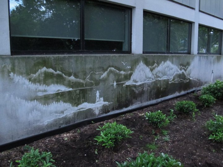 reverse-graffiti-by-tess-jakubec-1