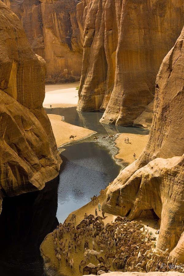 Ancient Pool of Water in the Middle of Sahara Desert | Memolition