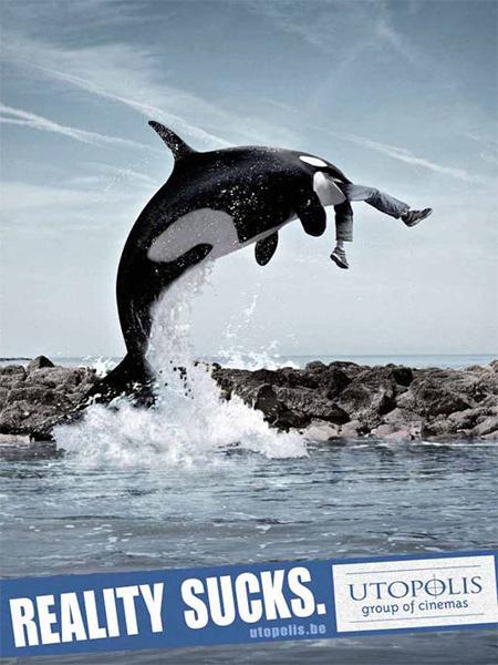 elephants-whales