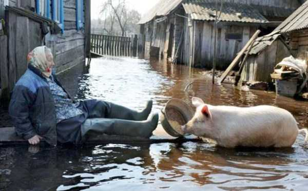 russian-village-funny-pics-2