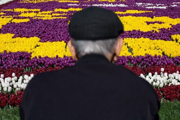 man-tulips