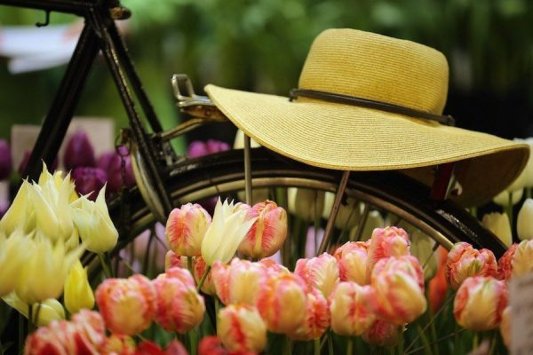 hat-bike-flowers