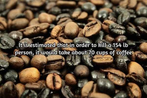 facts-about-coffee-14