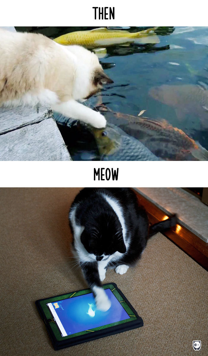 cats-then-now-funny-technology-change-life-22-5716355ec13d5__700