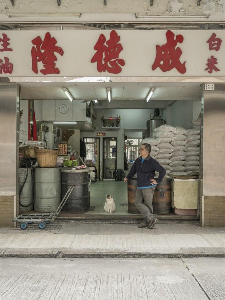shop-cats-photography-marcel-heijnen-hong-kong-16-5809cd76bd498__880