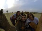 Jaisalmer con Camello - India