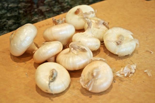 Cipolline (Cipollini Onions)