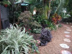 Tropical area