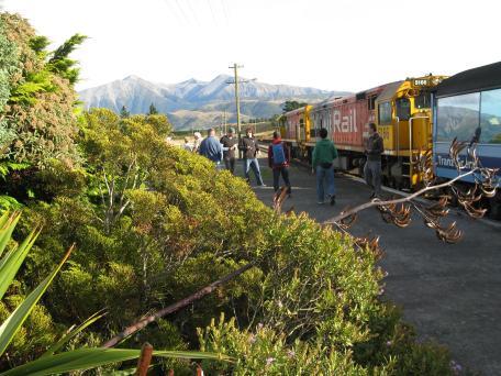 Trans Alpine express