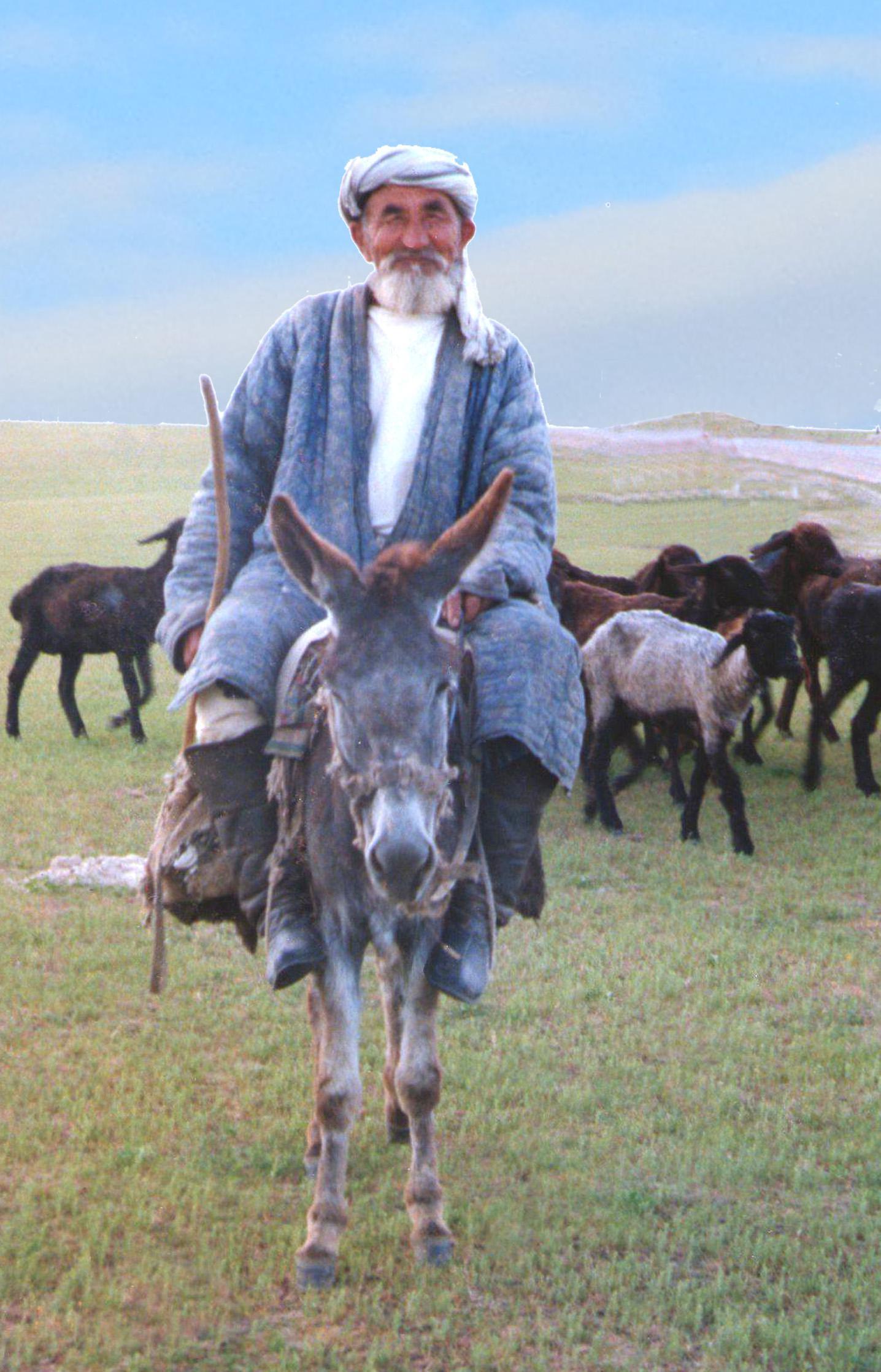 biblical man on donkey