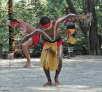 Dance of the Jabiru