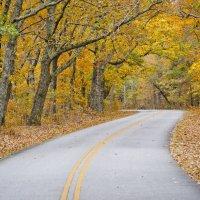 F.D. Roosevelt State Park- Pine Mountian, GA