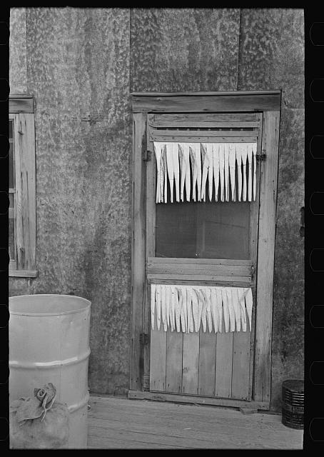 Back door of farm home. Williams County, North Dakota.  1937 September.  John Vachon, photographer.  (Library of Congress)