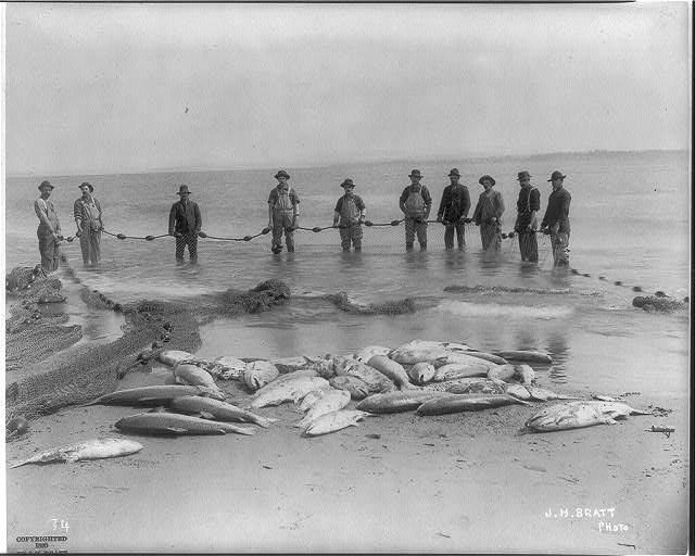 10 fishermen posed with net and catch, circa 1895/1896