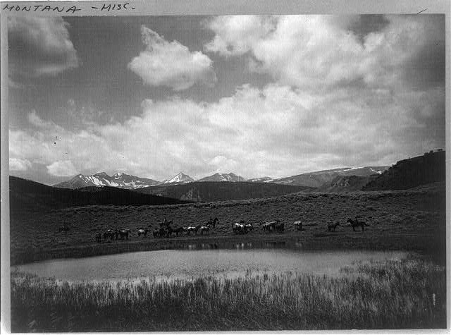 Four cowboys and group of horses by pond, Nine Quarter Circle Ranch, Eldridge, Montana.  c. 1911.