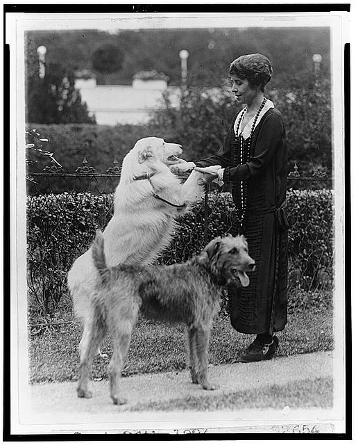 Grace Coolidge with two dogs, holding the front paws of one, July 26, 1924.