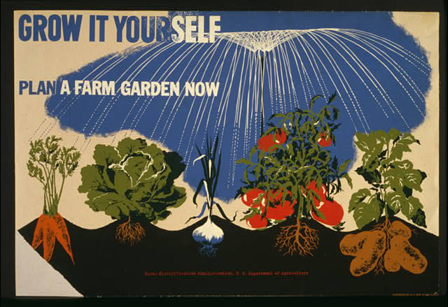 Poster for the U.S. Department of Agriculture promoting victory gardens, showing carrots, lettuce, corn, tomatoes, and potatoes growing.  NYC WPA War Services (between 1941 and 1943)