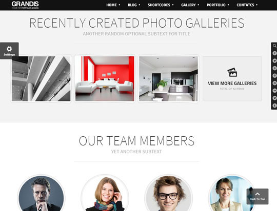 grandis portfolio wordpress themes