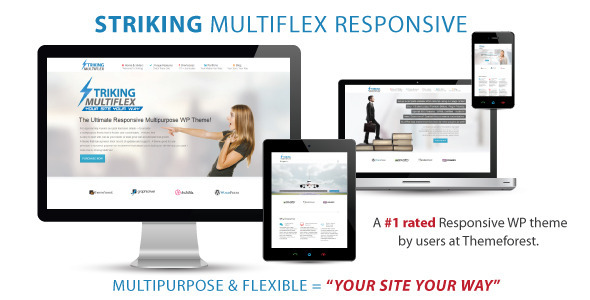 striking-multiflex-wordpress-theme