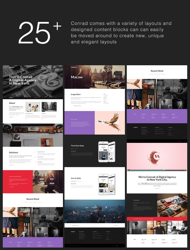 15 Best and Responsive HTML Themes