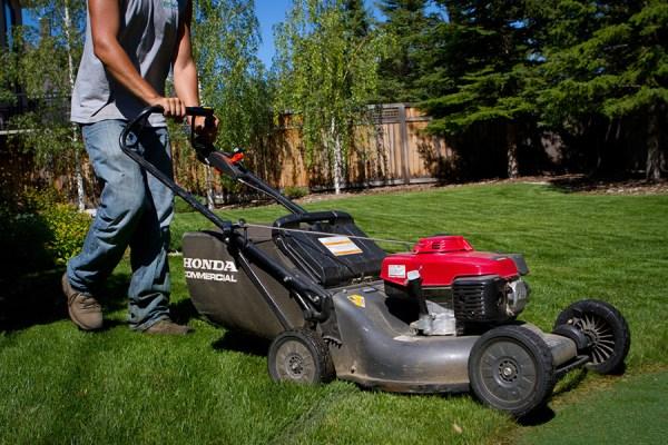 lawn maintenance memphis