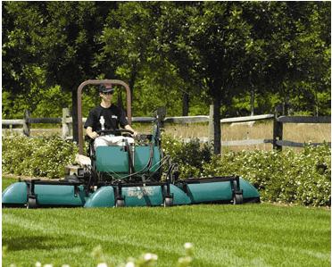 memphis lawn service