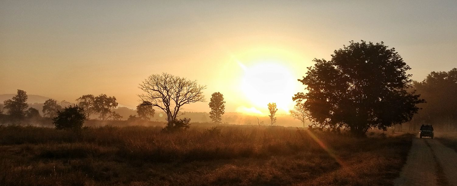 kanha-sunrise